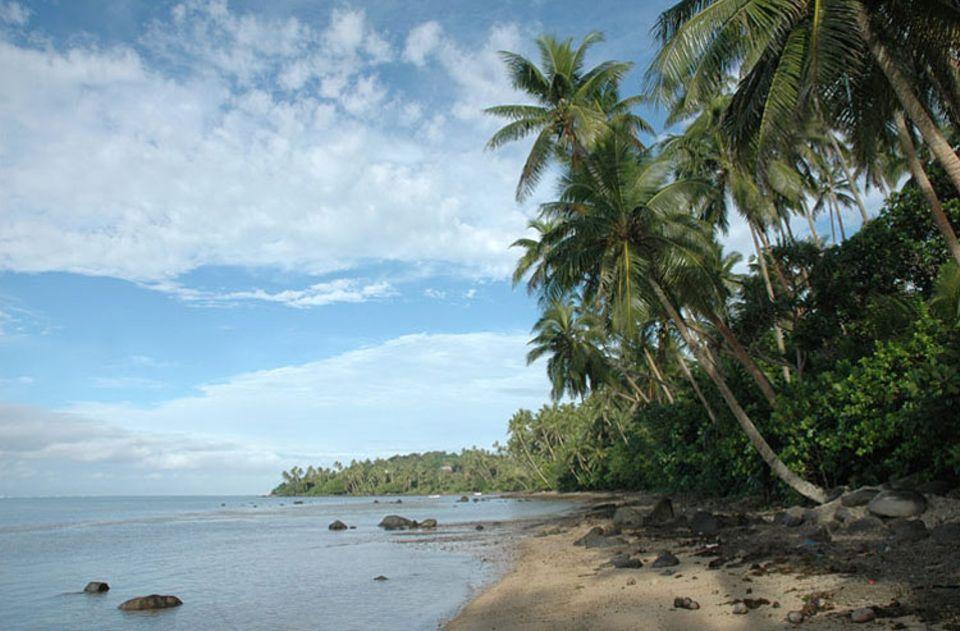 Palmen, Sandstrand und rauschendes Meer liegen direkt vor der Haustür