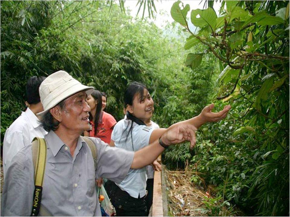 Auf geführten Touren mit Experten konnten Teilnehmer Flora und Fauna entdecken
