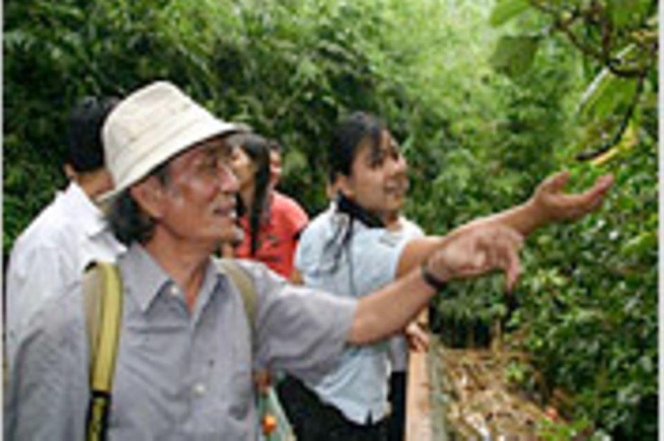 B-Day auf vietnamesisch