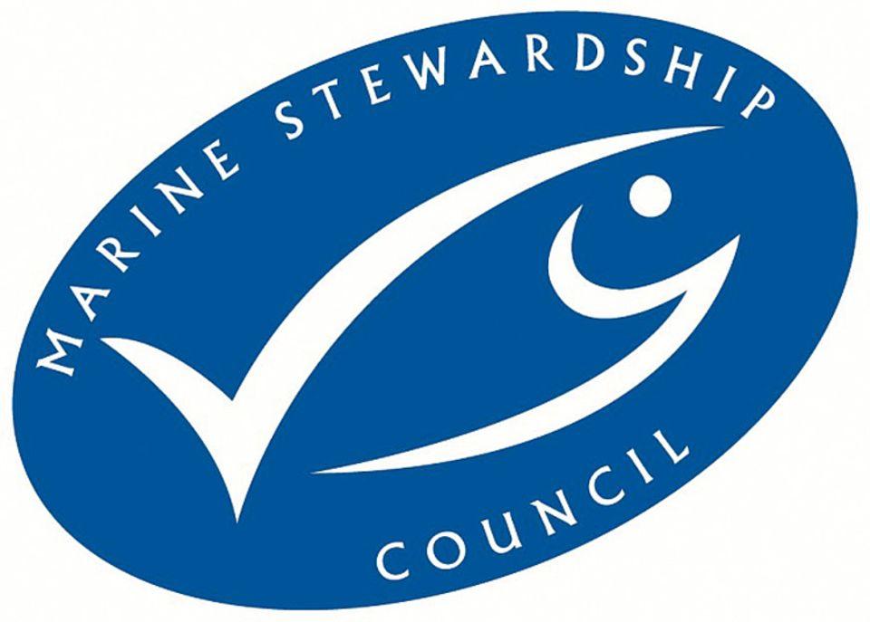 Das Ökosiegel für Fisch: Wer lizensierte Produkte kauft, hilft beim Bestandschutz