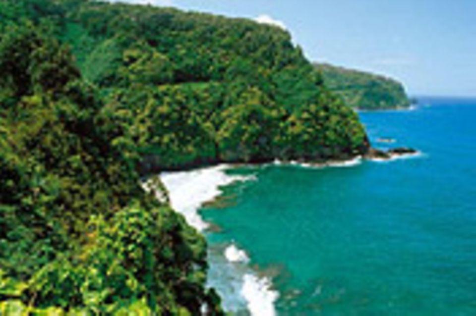 Hawaii: Wunder der Wiederkehr