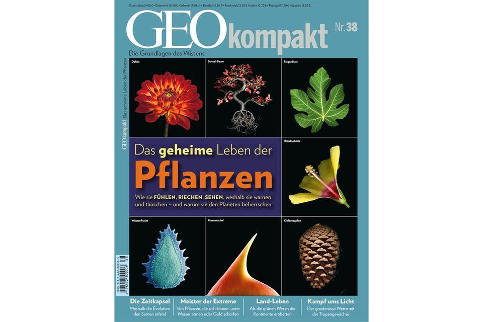 GEO KOMPAKT Nr. 38 - 03/2014: GEO KOMPAKT Nr. 38 - 03/2014 - Das geheime Leben der Pflanzen
