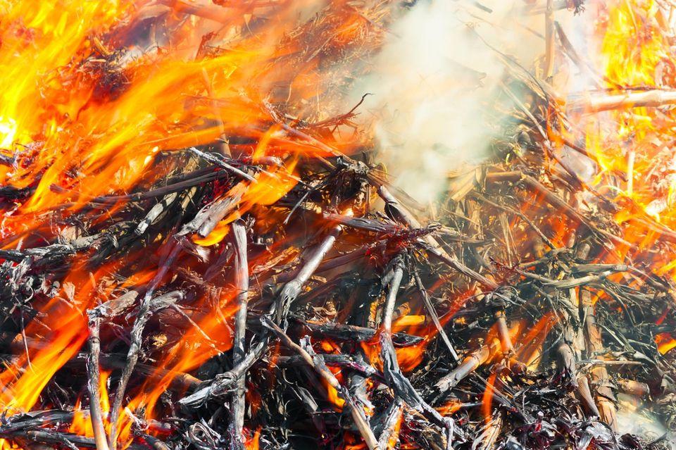 Warum knistert Feuer?