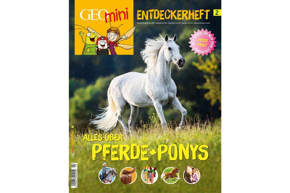 GEOMINI ENTDECKERHEFT Nr. 02: GEOMINI ENTDECKERHEFT Nr. 02 Alles über Pferde und Ponys