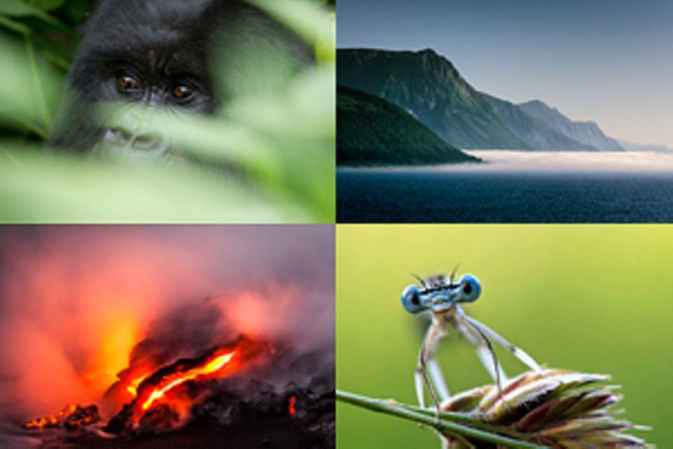 Fotowettbewerb: GEO-Leserfoto: Machen Sie jetzt mit und gewinnen Sie ein GEO-Jahresabo!