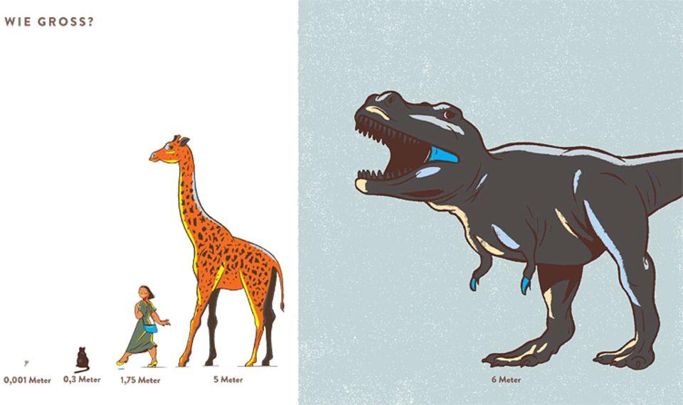 Buchtipp: Mit bis zu sechs Metern Höhe war der Tyrannosaurus Rex nur einen Meter größer als eine Giraffe