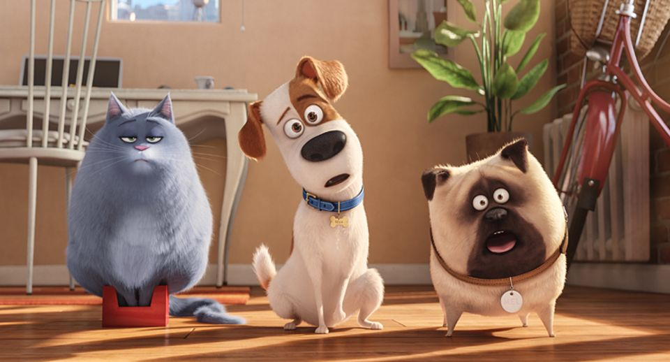 Filmtipp: PETS: Die dicke Katze Chloe, der verwöhnte Terriermischling Max und der aufgedrehte Mops Mel (v.l.n.r.)