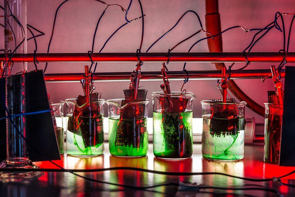 Energiegewinnung: Strom aus dem Bio-Reaktor
