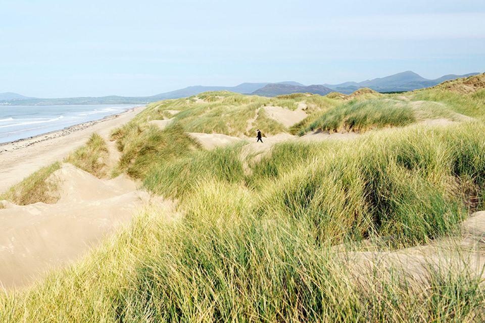 Snowdonia: Die Bucht von Harlech beherbergt den längsten Strand des Nationalparks und zählt mit zum Wales Cost Path