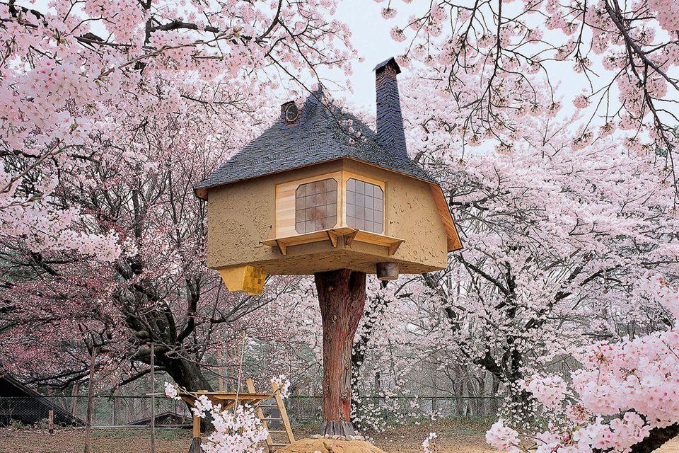 """Bildband """"Tree houses"""": Eine Reise zu den Baumhäusern dieser Welt"""