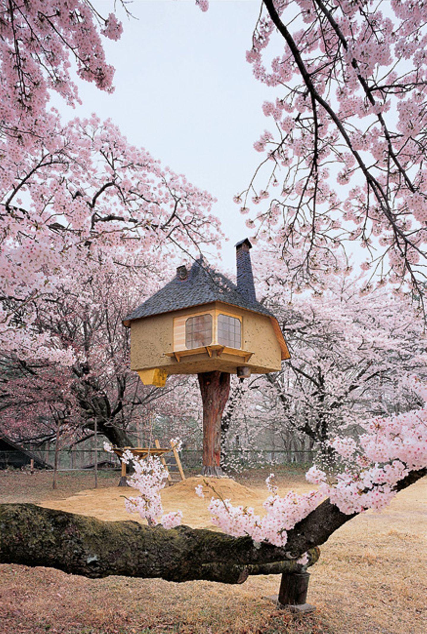 Teehaus, Japan