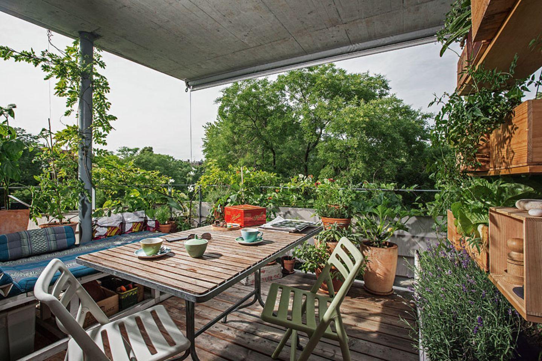 5) Gemüse als Balkonzierde: schöne und essbare Pflanzen