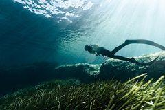 Im Meer wandern