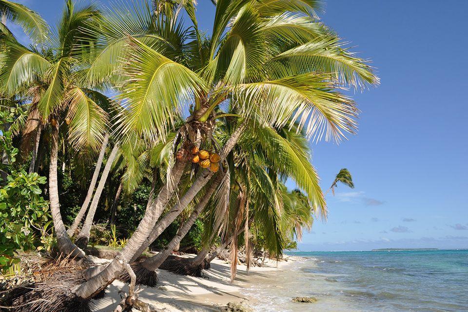 Aussteigen auf Zeit: 10 Dinge, die man auf einer einsamen Insel wirklich braucht