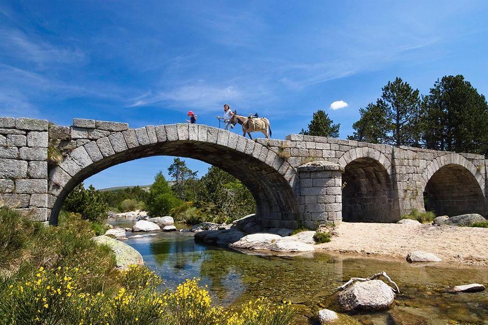 Eselsbrücken: Eselsbrücken: Der Spickzettel im Kopf
