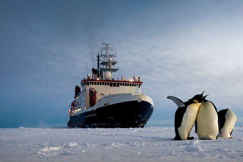 Polarstern: Unterwegs in die Antarktis