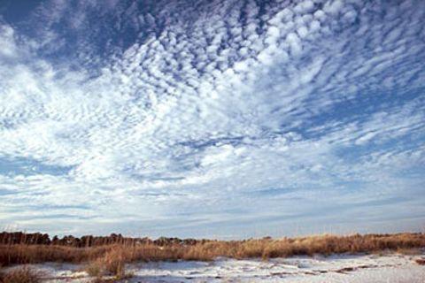 Wetter: Die Sprache der Wolken
