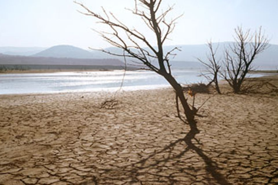 Globale Erwärmung: Klimawandel: Es wird wärmer!