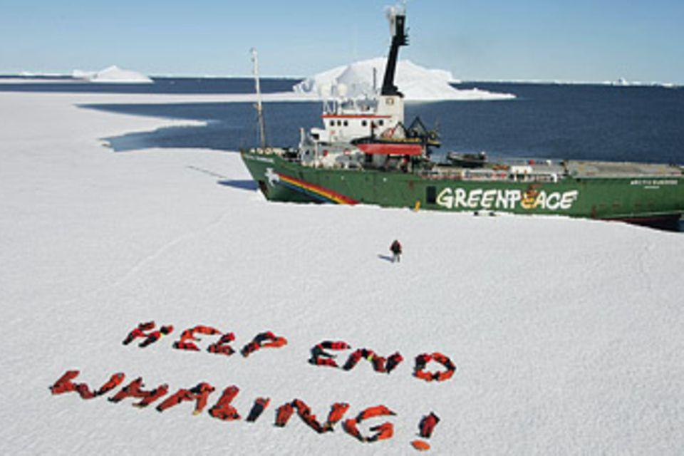 Greenpeace: Eine Dusche für die Walfänger