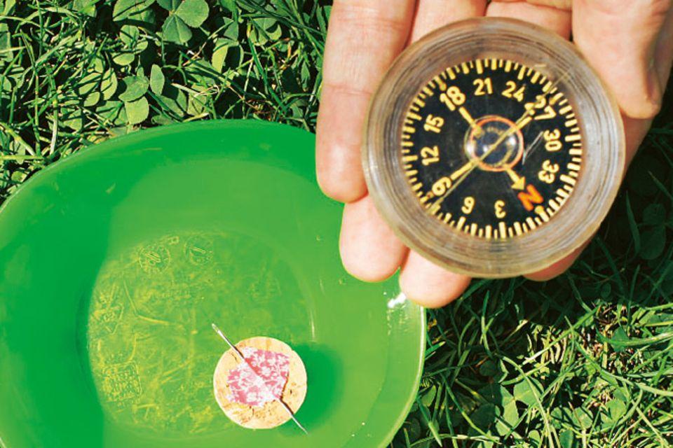 Experiment: Der Nadelkompass