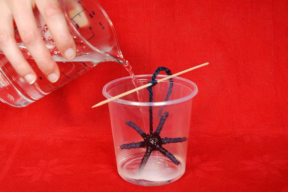 Experiment: Kristalle züchten