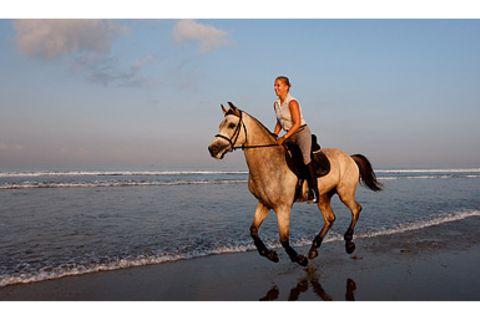 Flüstern mit Pferden: Interview mit Pferdewirtin Jutta Bohnenstengel