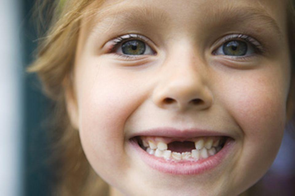 Zähne: Was die Beißerchen alles können