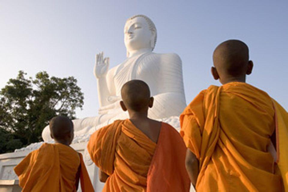 Weltreligionen: Der Buddhismus