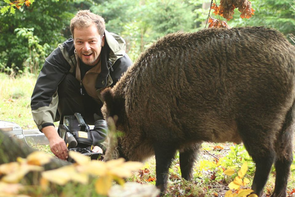 Beruf: Naturfilmer