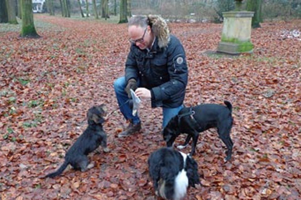 Beruf: Hundesitter