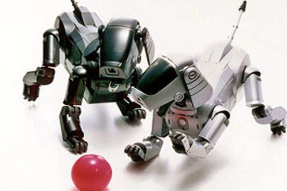 Technik: Roboter: Lebewesen aus Stahl