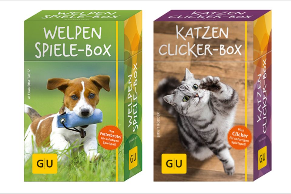 Welpen-Spiele- und Katzen-Clicker-Box