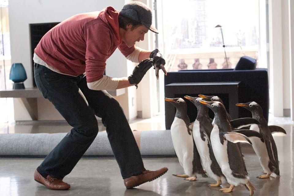 Kinotipp: Mr. Poppers Pinguine