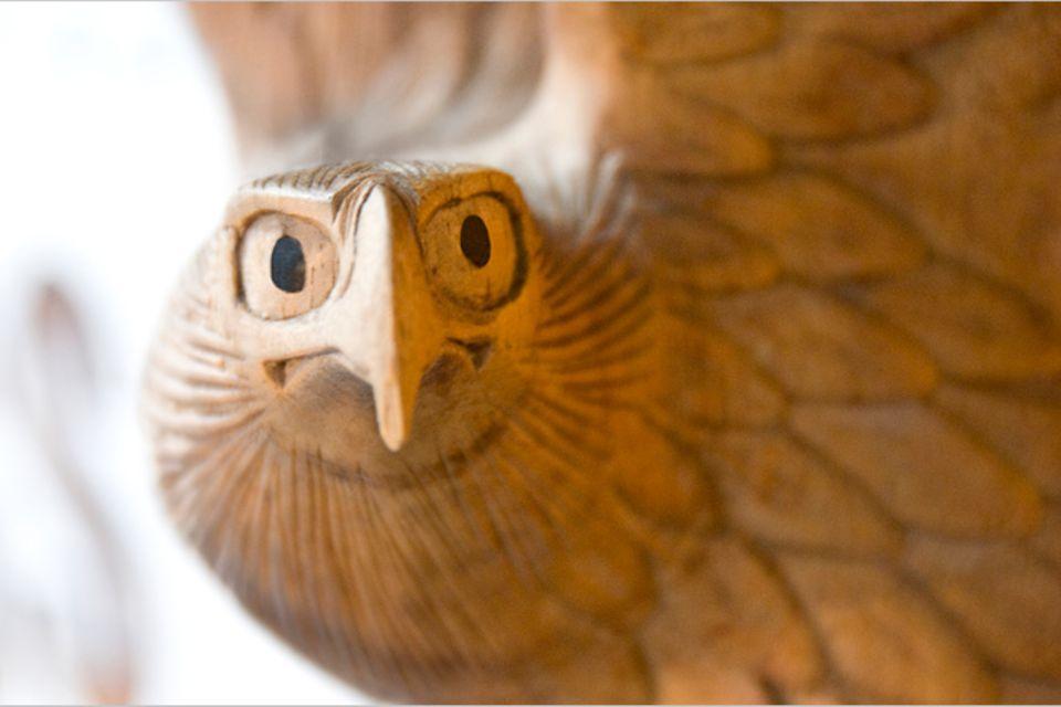 Redewendung: Den Vogel abschießen