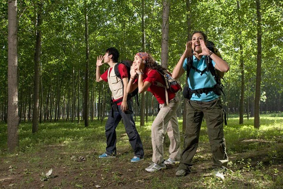 Redewendung: Wie man in den Wald hinein ruft, so schallt es heraus
