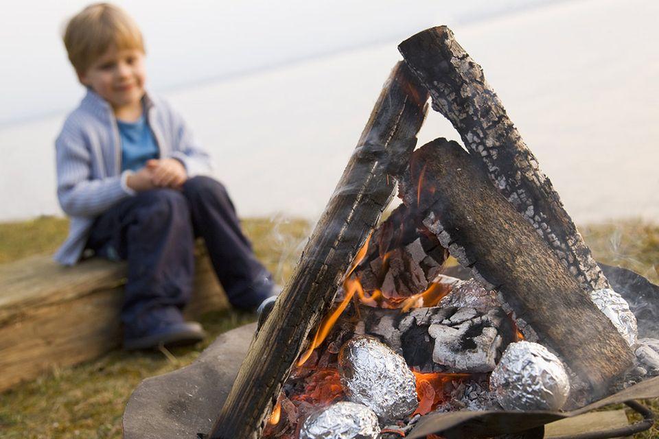 Redewendung: Für jemanden die Kartoffeln aus dem Feuer holen