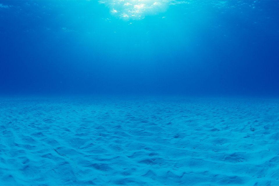 Redewendung: Stille Wasser sind tief