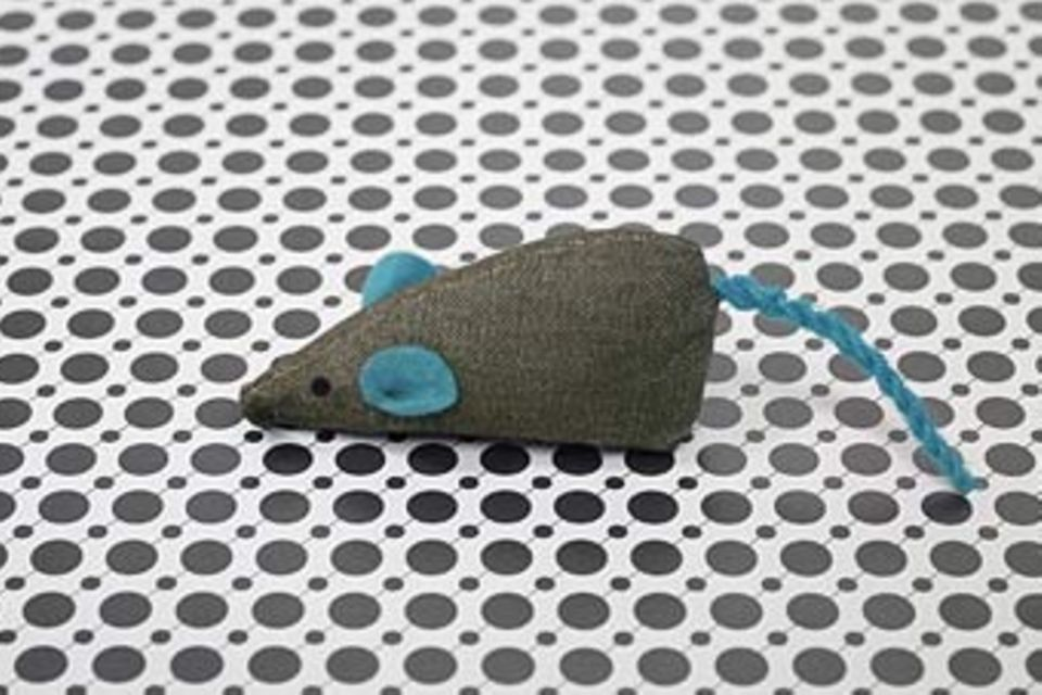 Redewendung: Da beißt die Maus keinen Faden ab