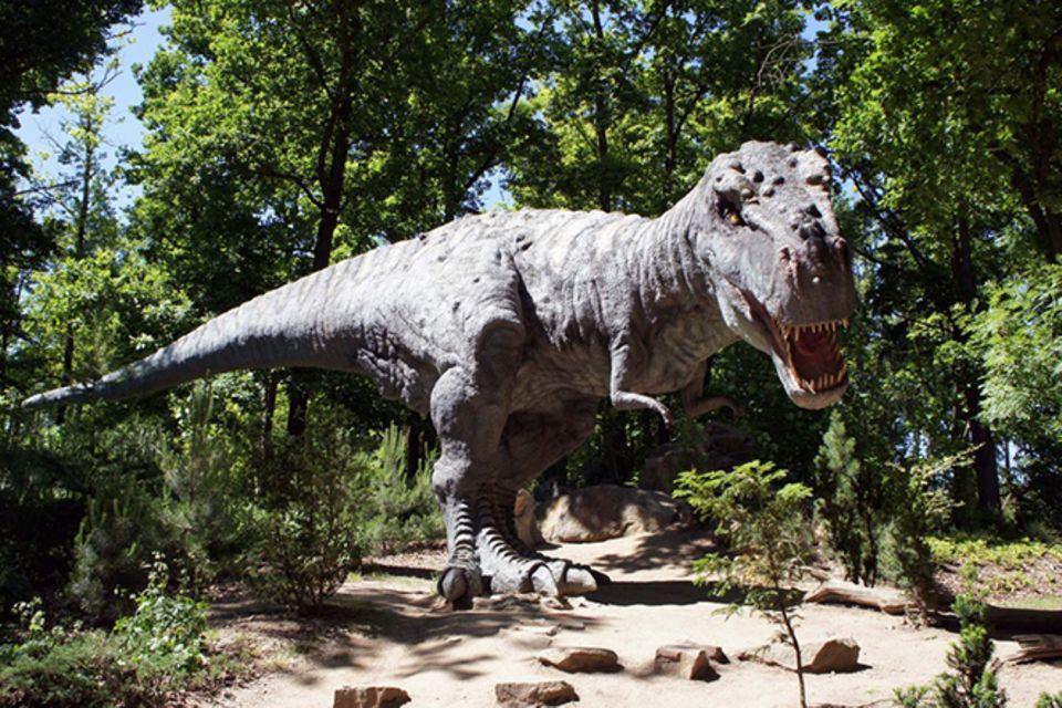 Tierlexikon: Tyrannosaurus Rex