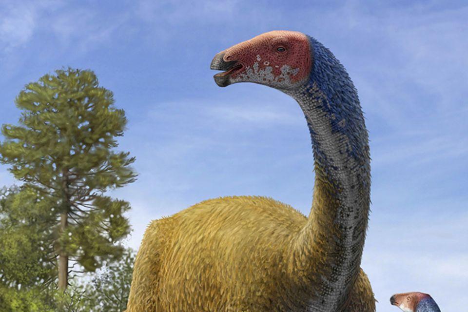 Tierlexikon: Therizinosaurus