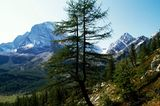 Grande Traversata, Alpe Veglia