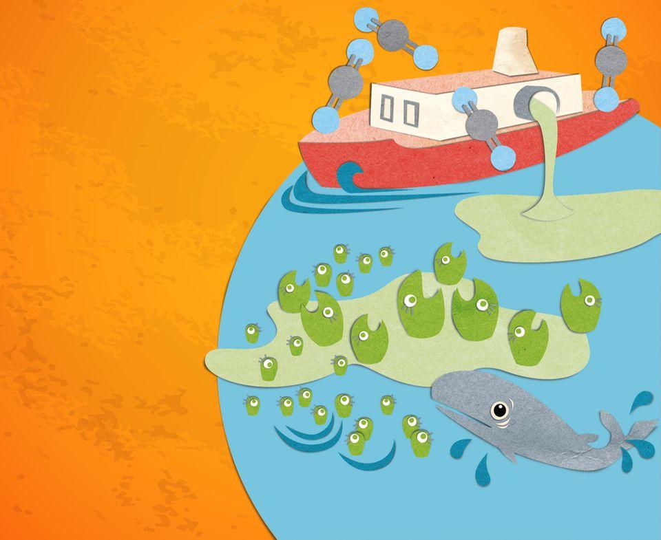 Klimawandel: Plankton könnte als Klimaretter helfen, da es Kohlendioxid aufnimmt