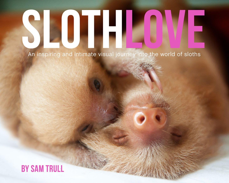 Cover, Slothlove
