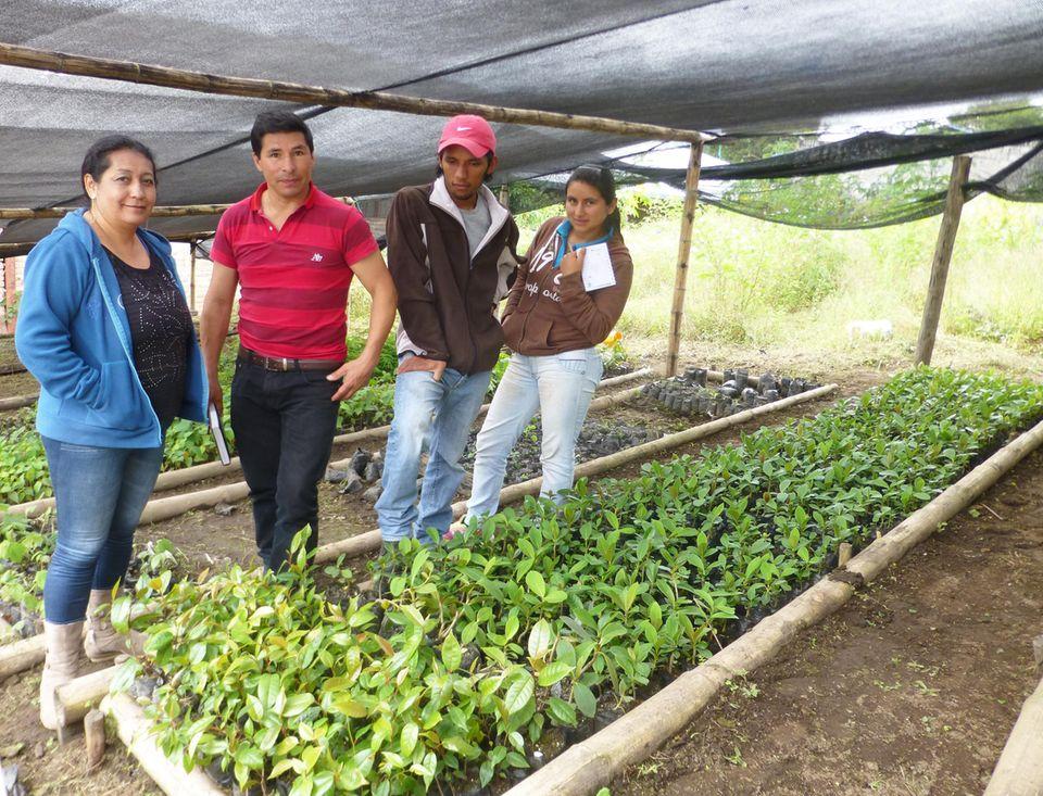 Ecuador: Juni 2016: Silvia Quilumbango und Milton Arcos mit den Projektbetreibern (re.) René Garzón und Talía Zumarraga in der kleinen Baumschule des Bezirkszentrums Cuellaje
