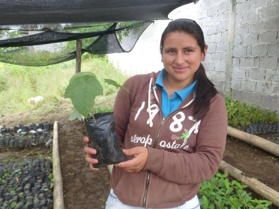 Ecuador: Stolz präsentiert Talía einen ihrer Guarumbo-Setzlinge in der Baumschule Cuellaje