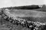 Preußen: Bildstrecke: Preußen im Ersten Weltkrieg - Bild 5