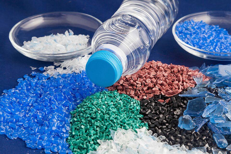Junk-Food: Diese Raupe ernährt sich von Plastik