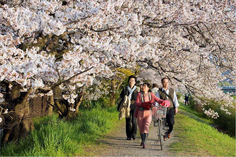 Japan: So entspannt kann Tokio sein