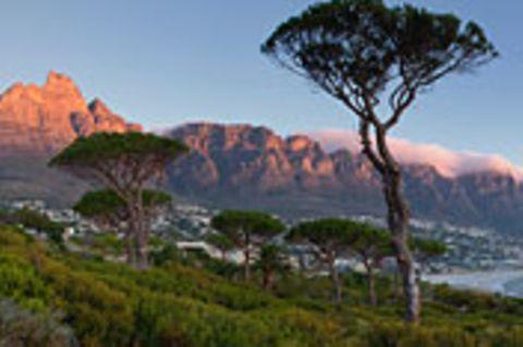 Südafrika: Weinrouten