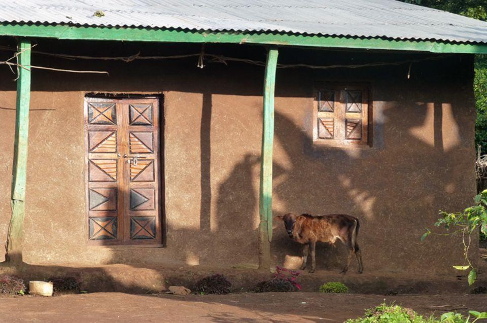 Dieses Haus hat schon ein modernes Wellblechdach, die Wände aus Lehm und Dung sowie die Schnitzarbeiten entsprechen der Tradition